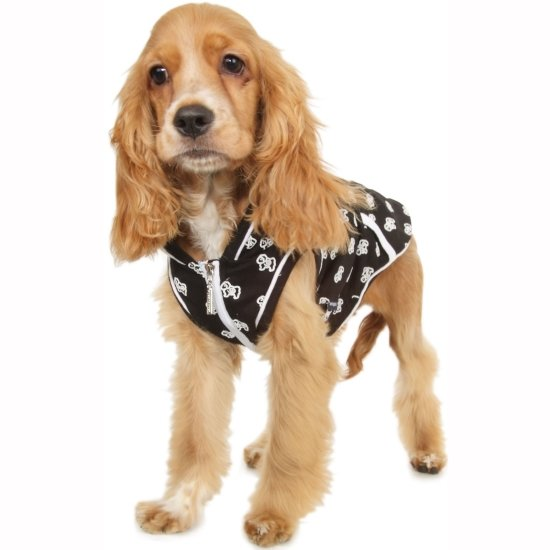 Hoodies for Dogs are a very popular item come Fall and Winter. They